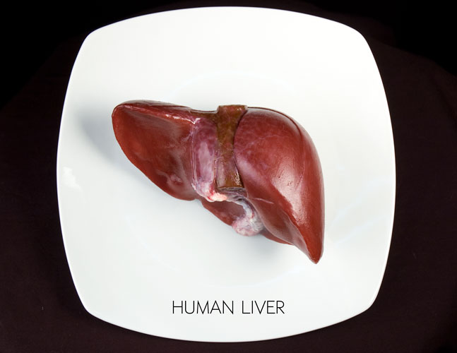 HumanLiver